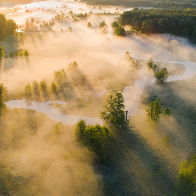 gloucetershire misty morning